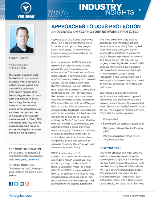 Approaches to DDoS Protection