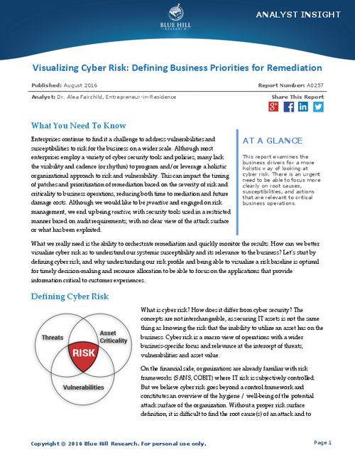 Define Business Priorities for Remediation