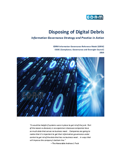 Disposing of Digital Debris: Information Governance Strategy and Practice in Action