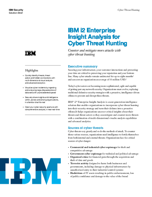 Enterprise Insight Analysis for Cyber Intelligence
