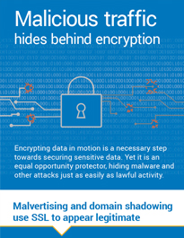 Malicious Traffic Hides Behind Encryption