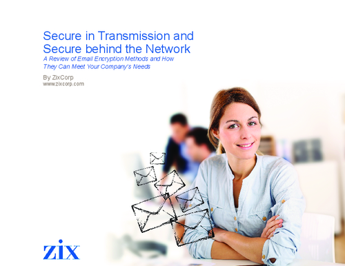 Secure in Transmission and Secure Behind the Network