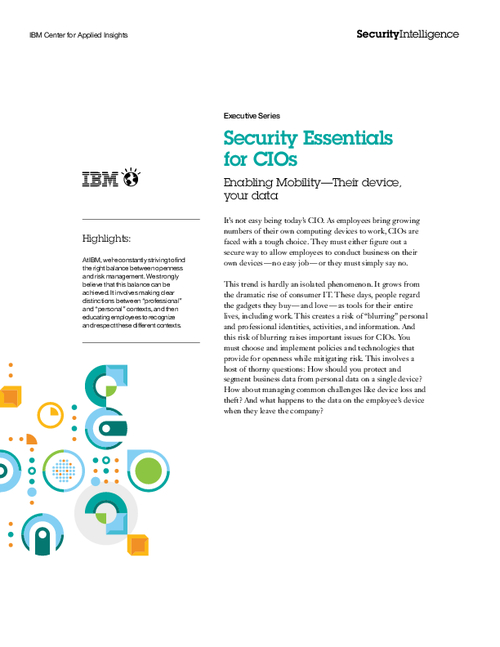 Security Essentials for CIOs