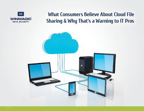What Consumers Believe About Cloud File Sharing & Why That's a Warning to IT Pros